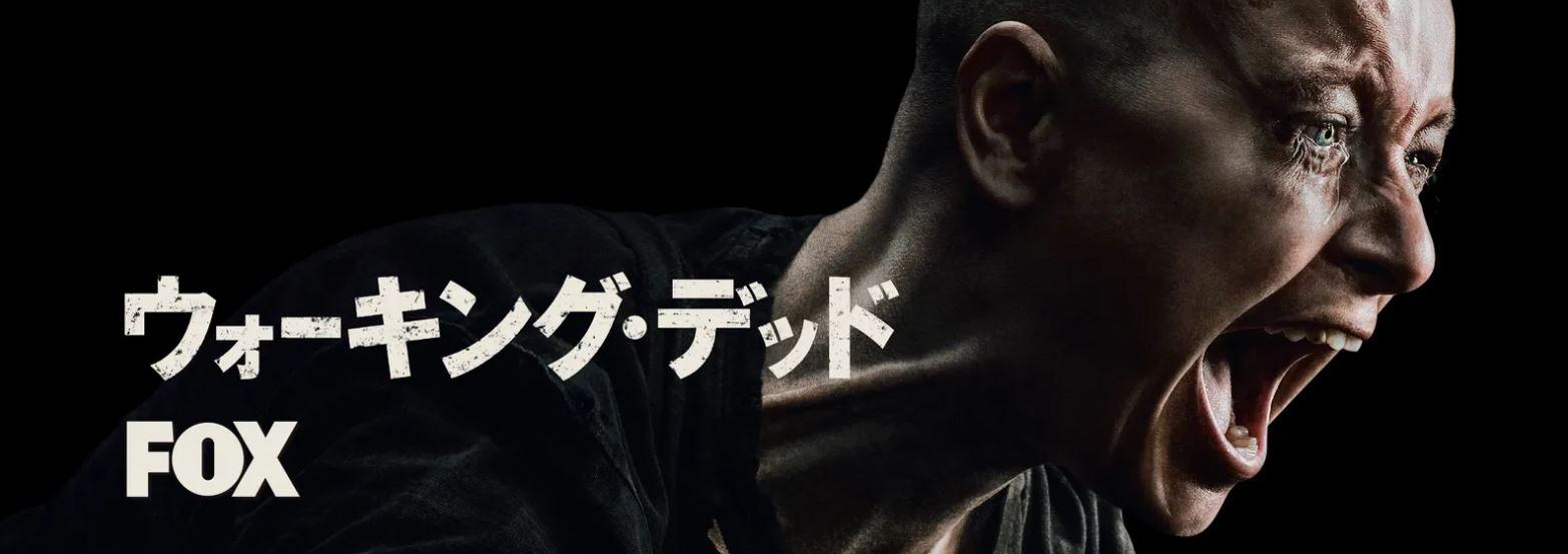 【2020最新】ホラー系海外ドラマオススメランキング第1位のウォーキングデッド