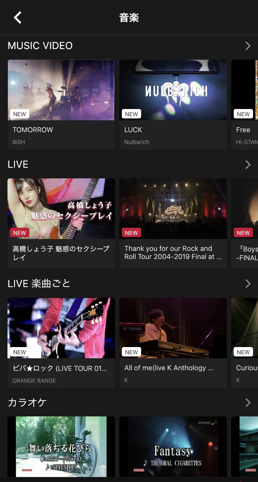 音楽好きに嬉しい!ライブ映像やミュージックビデオが豊富